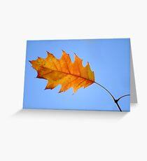 Autumn VII Greeting Card