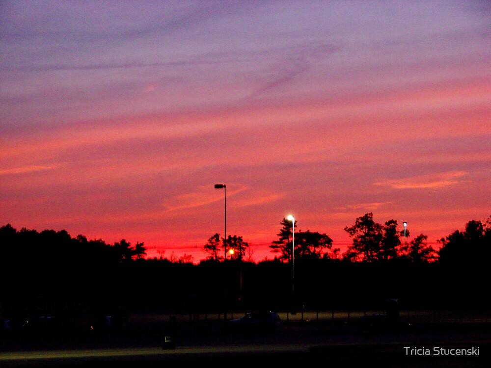 Sunset by Tricia Stucenski