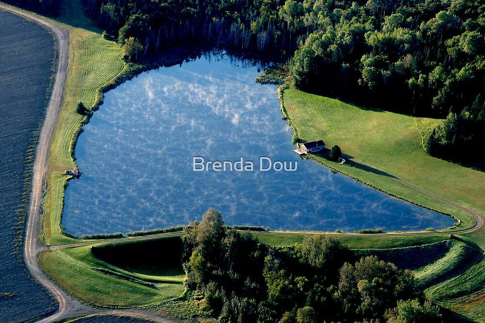 Pleasure Place by Brenda Dow