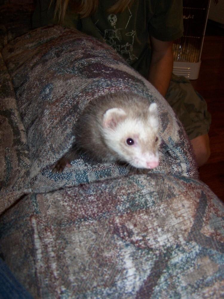 Jesper hiding by thsee