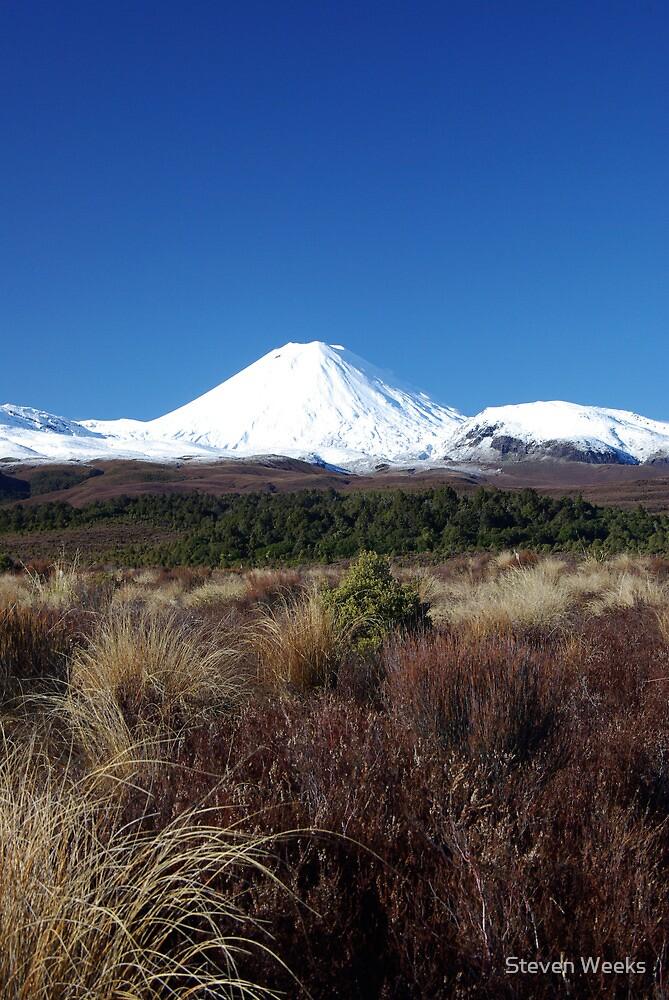 Mount Ngauruhoe by Steven Weeks