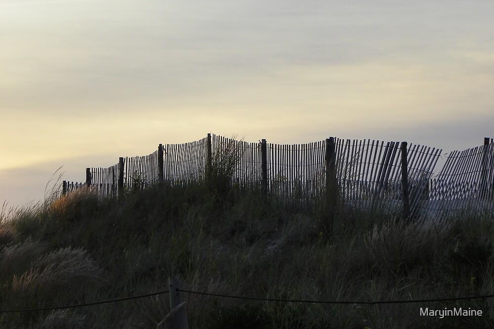 Cape May NJ - Beach Fence by MaryinMaine