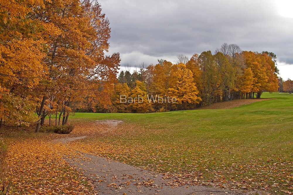Fall on the Golf Course by Barb White