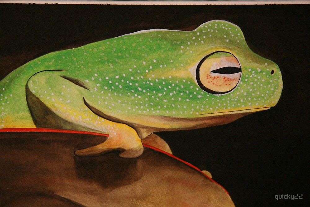 green tree frog by quicky22