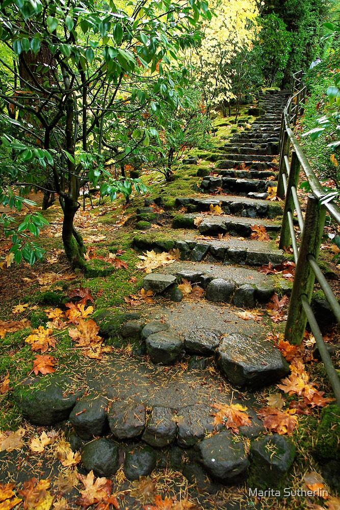 Stairway in Heaven by Marita Sutherlin