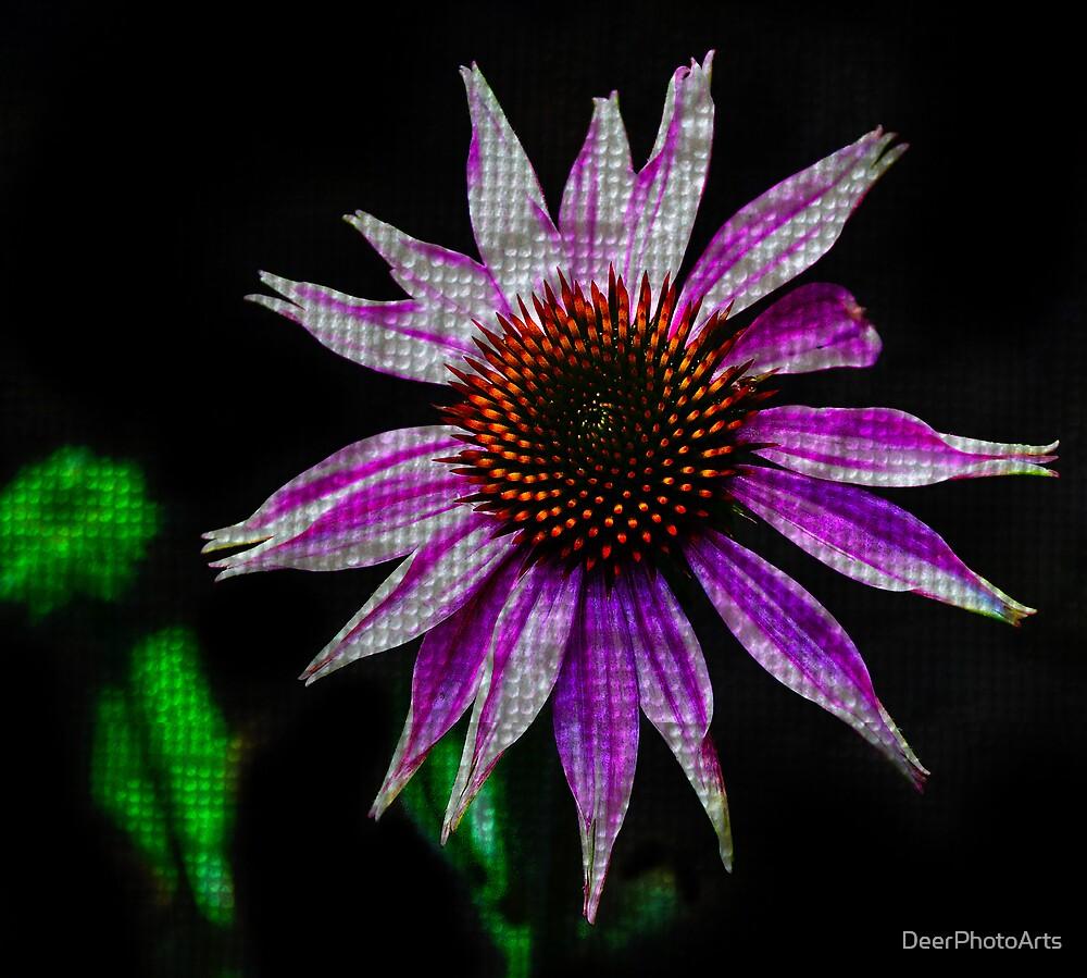 Pink Texture by DeerPhotoArts