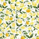 Lemons by annakoivumaki