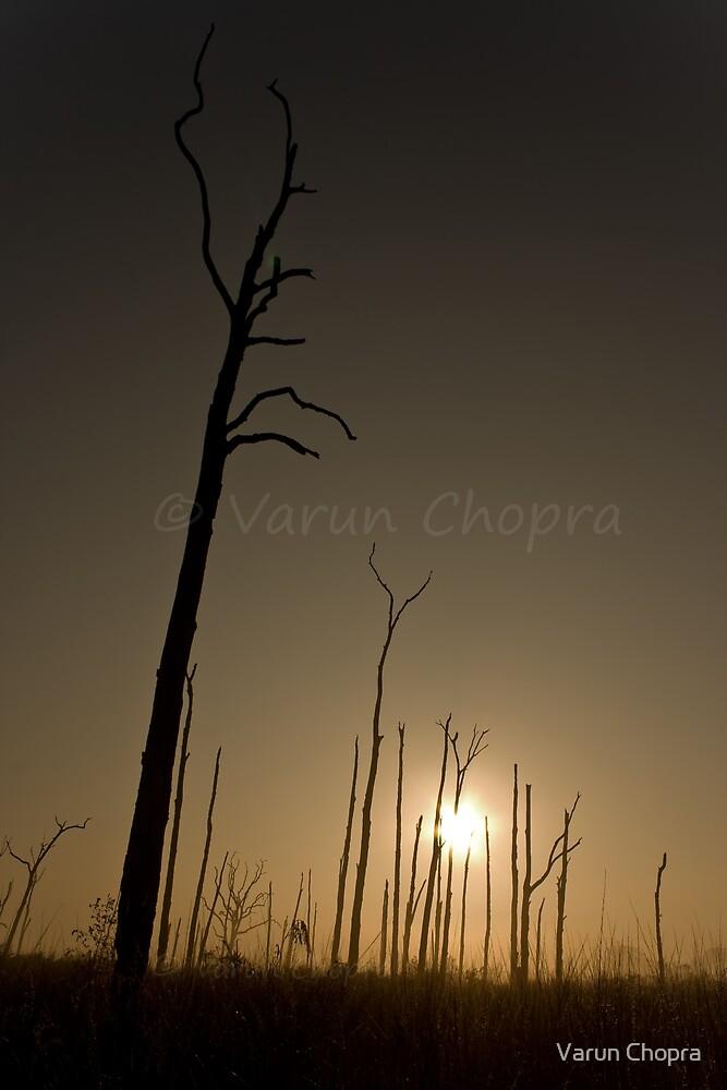 Sunrise in India!! by Varun Chopra