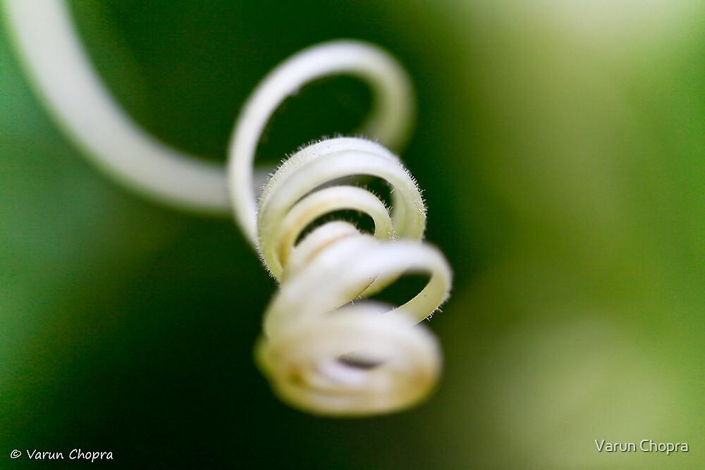 Swirly! by Varun Chopra