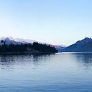 Lake Wakatipu by Will Hore-Lacy