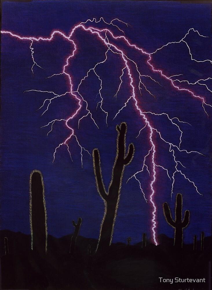 Desert Lightning by Tony Sturtevant
