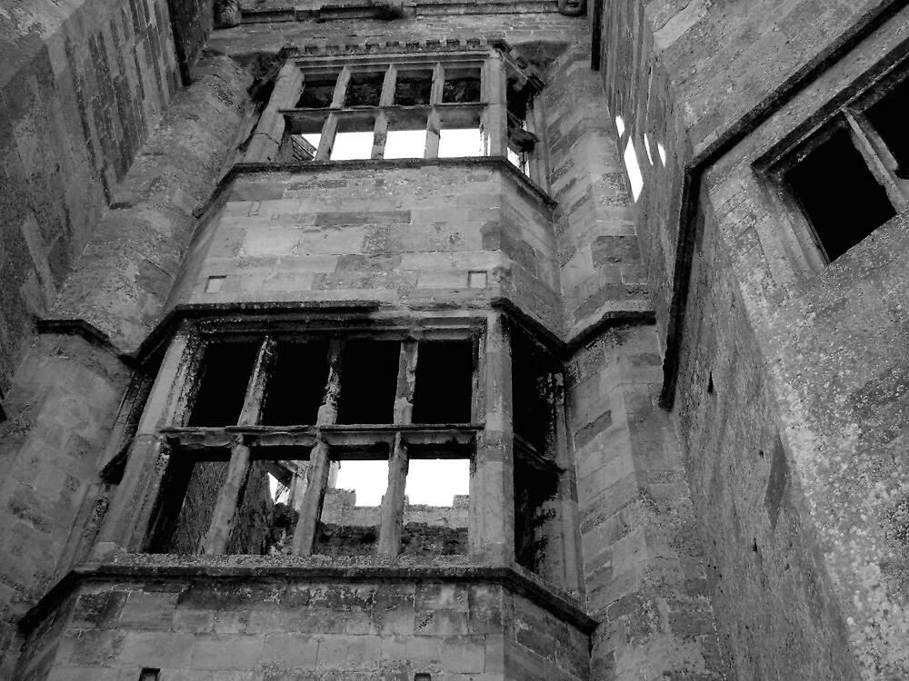 Titchfield Abbey  by Caroline Anderson
