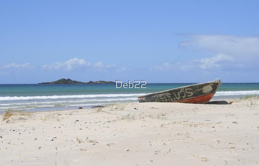 Sisters Beach, Tasmania, Australia by Deb22
