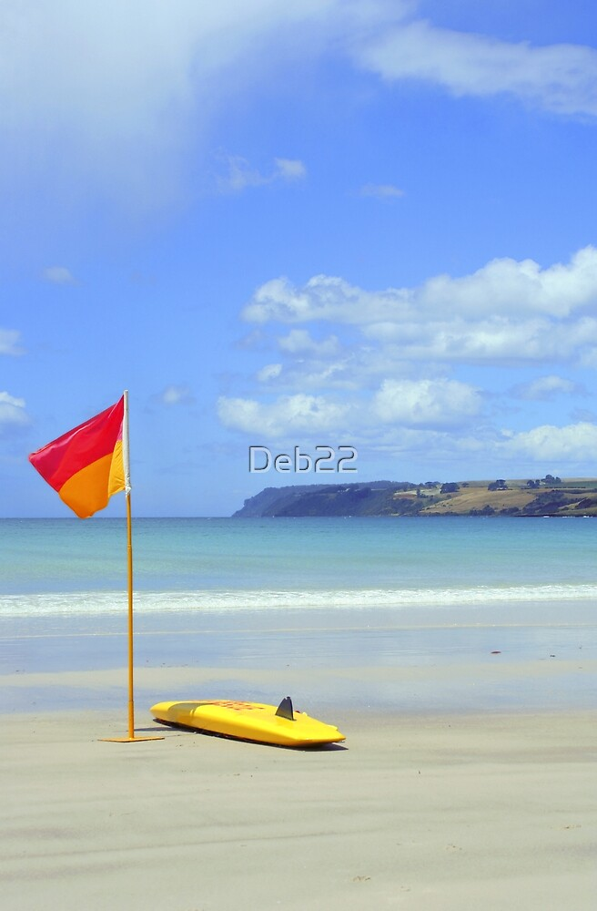 Boat Harbour beach, Tasmania, Australia by Deb22