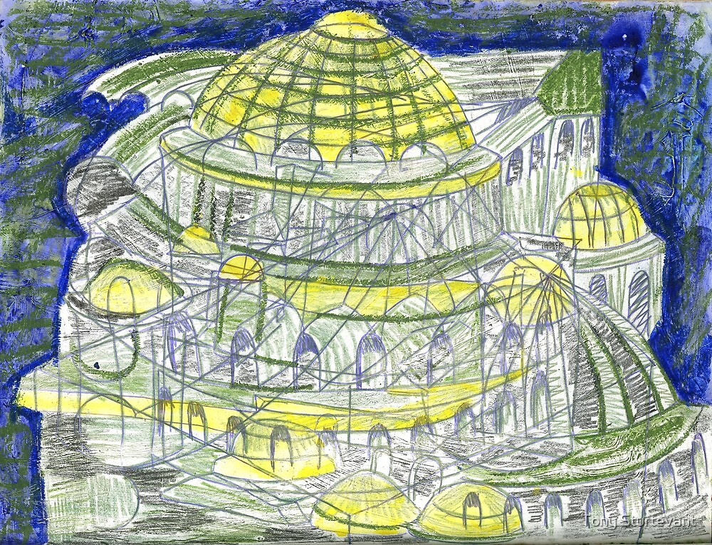 Blue Mosque by Tony Sturtevant
