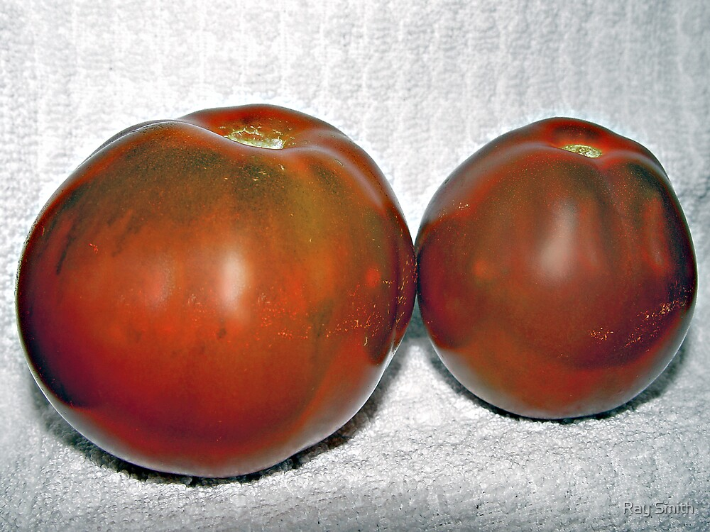 Tomatoes by Ray Smith