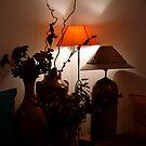 NIGHT LAMP by RakeshSyal