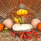 Thanksgiving Harvest by Maria Dryfhout