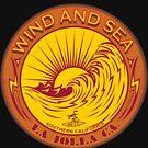 WIND AND SEA SURFING LA JOLLA CALIFORNIA by Larry Butterworth