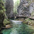 A walk in the Vintgar gorge - Slovenia by Arie Koene
