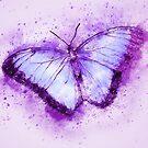 Butterfly Violet Splatter  by pinkarmy25