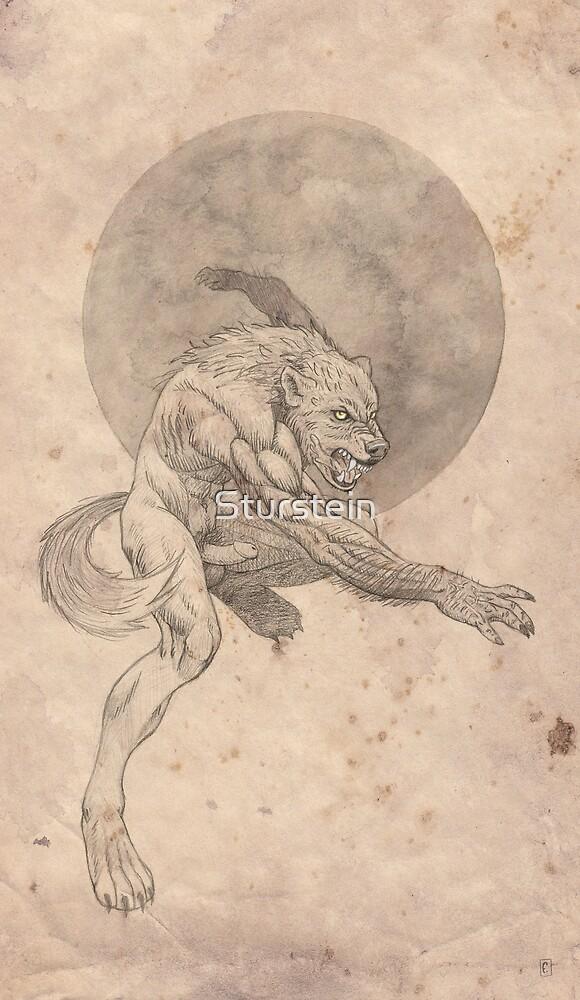 Kriegwolf by Sturstein