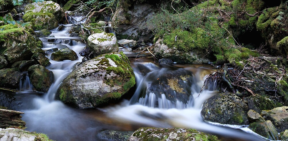 Ronny Creek to Waterfall Valley by avernus