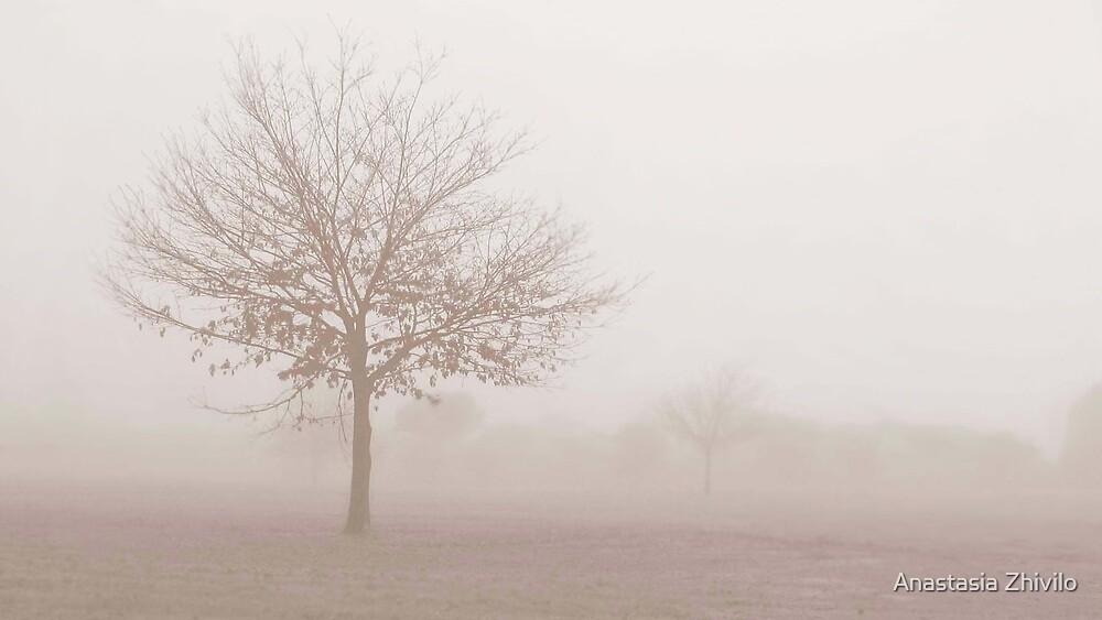 Autumn Morning by Anastasia Zhivilo
