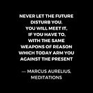 Stoic Wisdom Quotes - Marcus Aurelius Meditations - Never let the future disturb you by IdeasForArtists