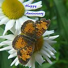 Daisy and Butterfly ..Anniversary Card by MaeBelle