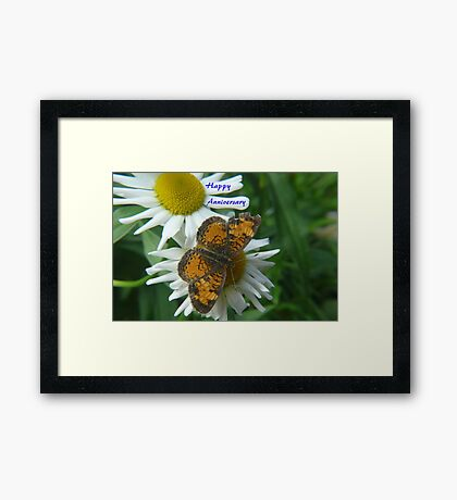 Daisy and Butterfly ..Anniversary Card Framed Print