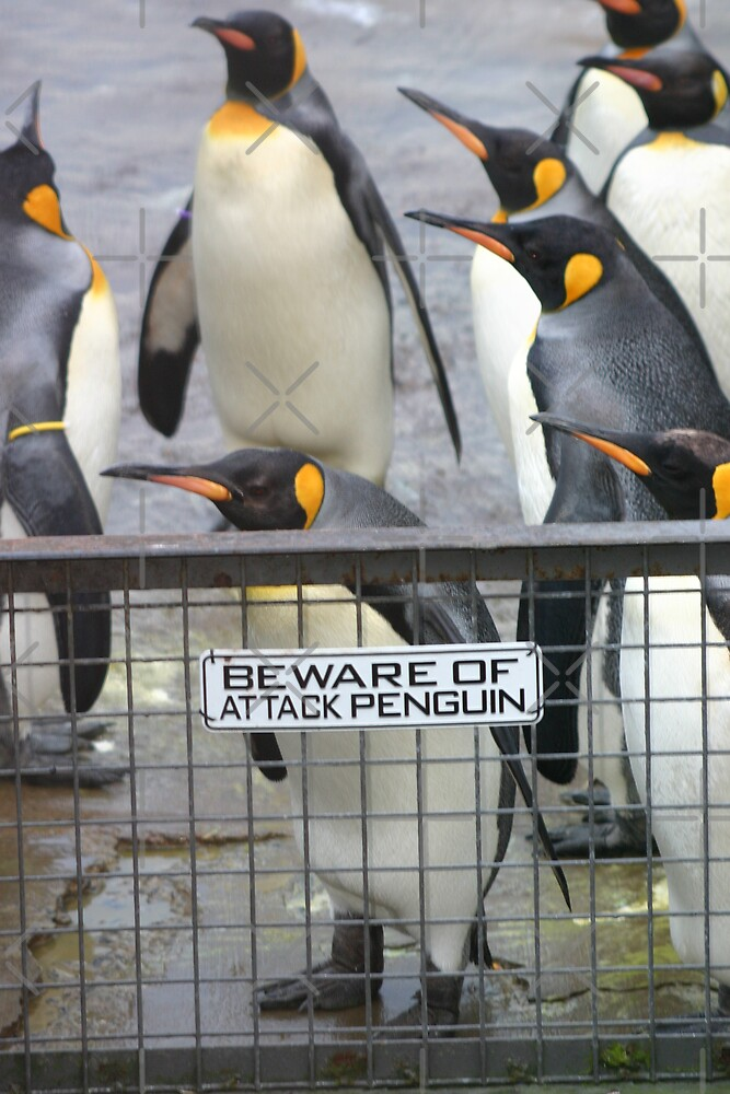 Warning - attack penguins! by Sandra O'Connor