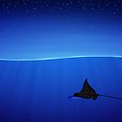 Spotted eagle ray, Aetobatus narinari by vladstudio