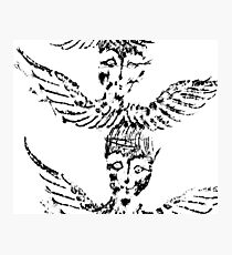 Black & White Abstract Angels Photographic Print