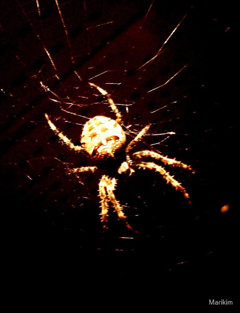 Spider-Sofy... by Marikim