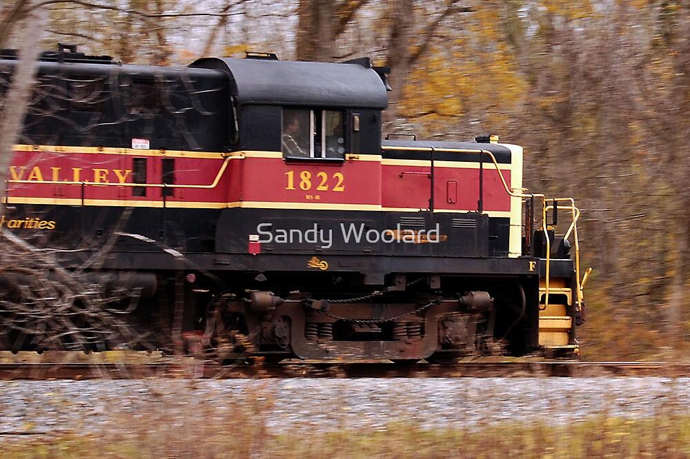 The Train is Leaving by Sandy Woolard