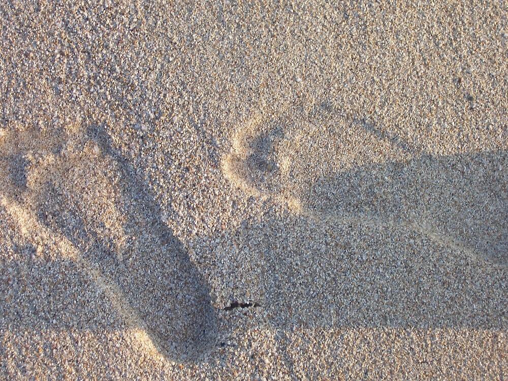 Sand by Waran