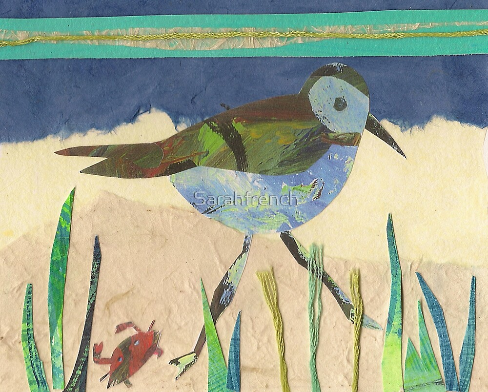 plover and crab by Sarahfrench
