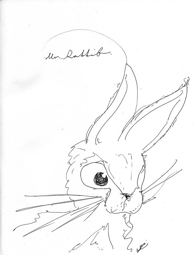 Mr. Rabbit by Isabella Jaacson
