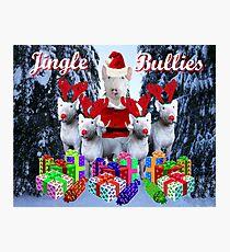 Jingle Bulls Jingle Bulls Photographic Print
