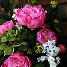 Pink Peony Roses by SunriseRose