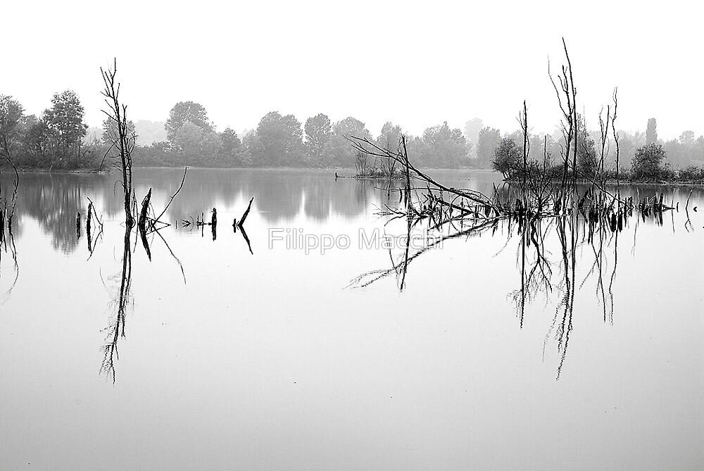 Peace river by Filippo Macchi