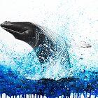 Whale by Ashvin  Harrison