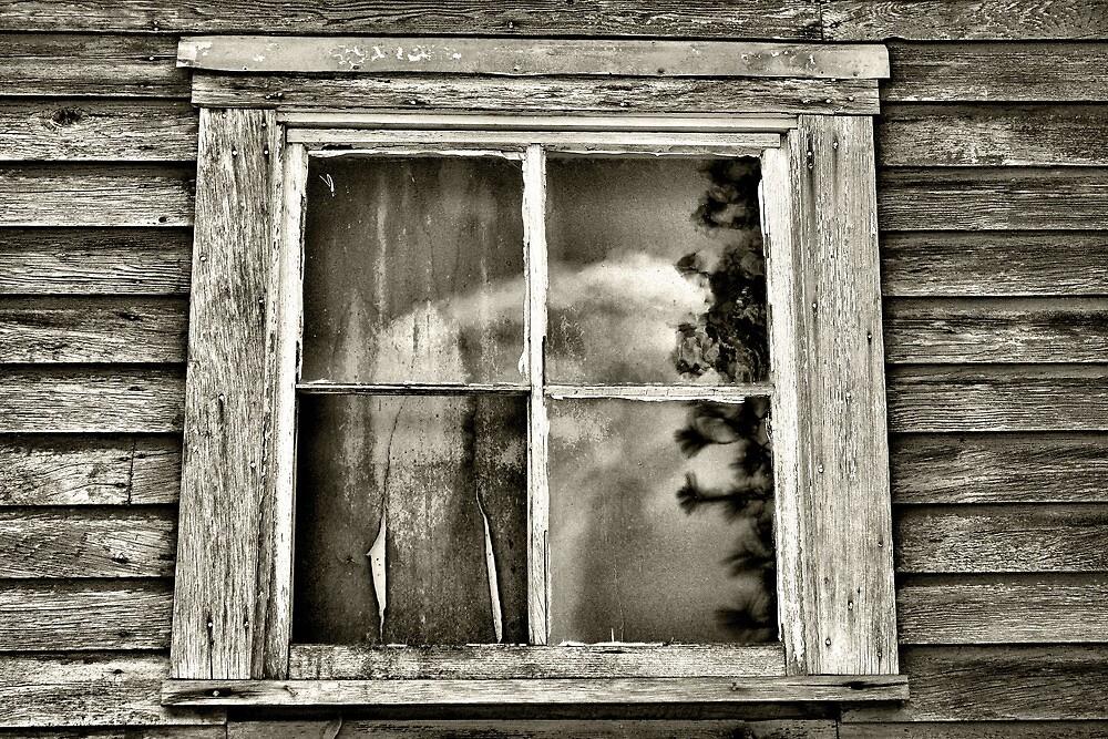 Clouded Past by Stephen  Van Tuyl