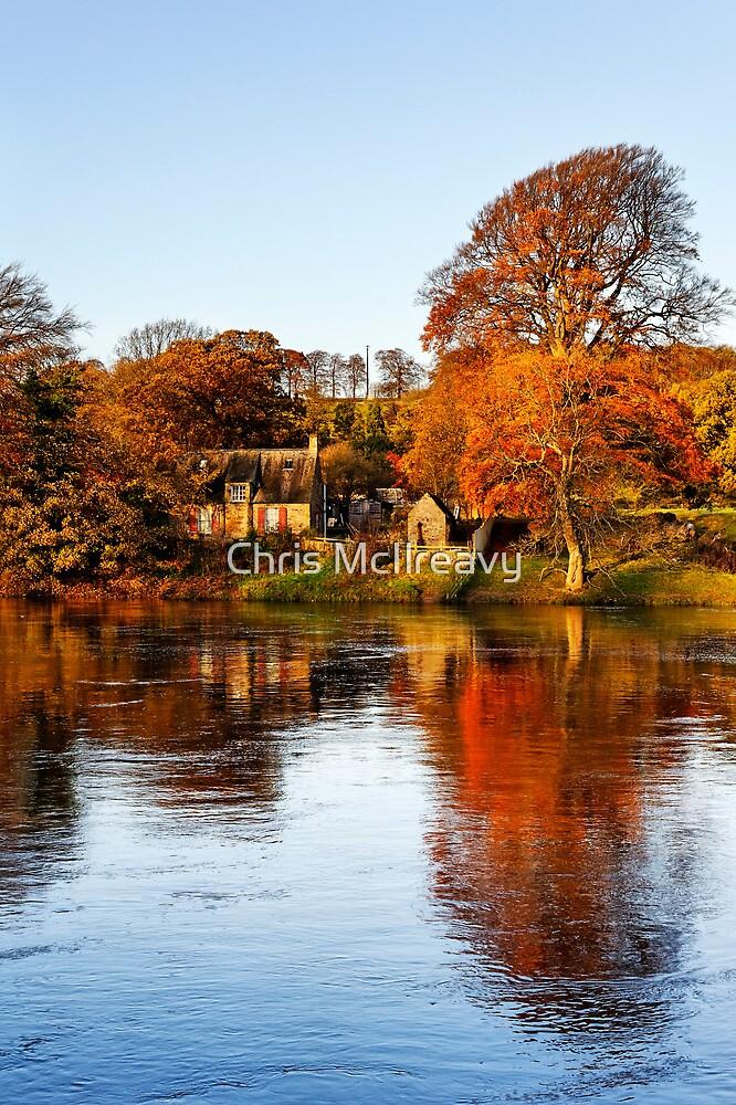Autumn Tyne by Chris McIlreavy
