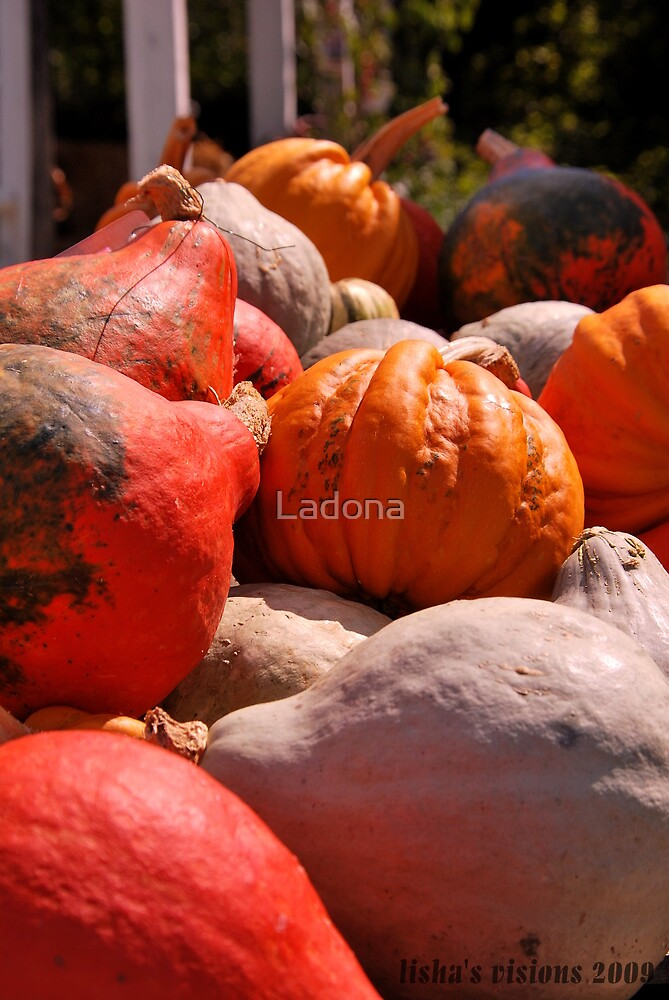 Untitled by Ladona