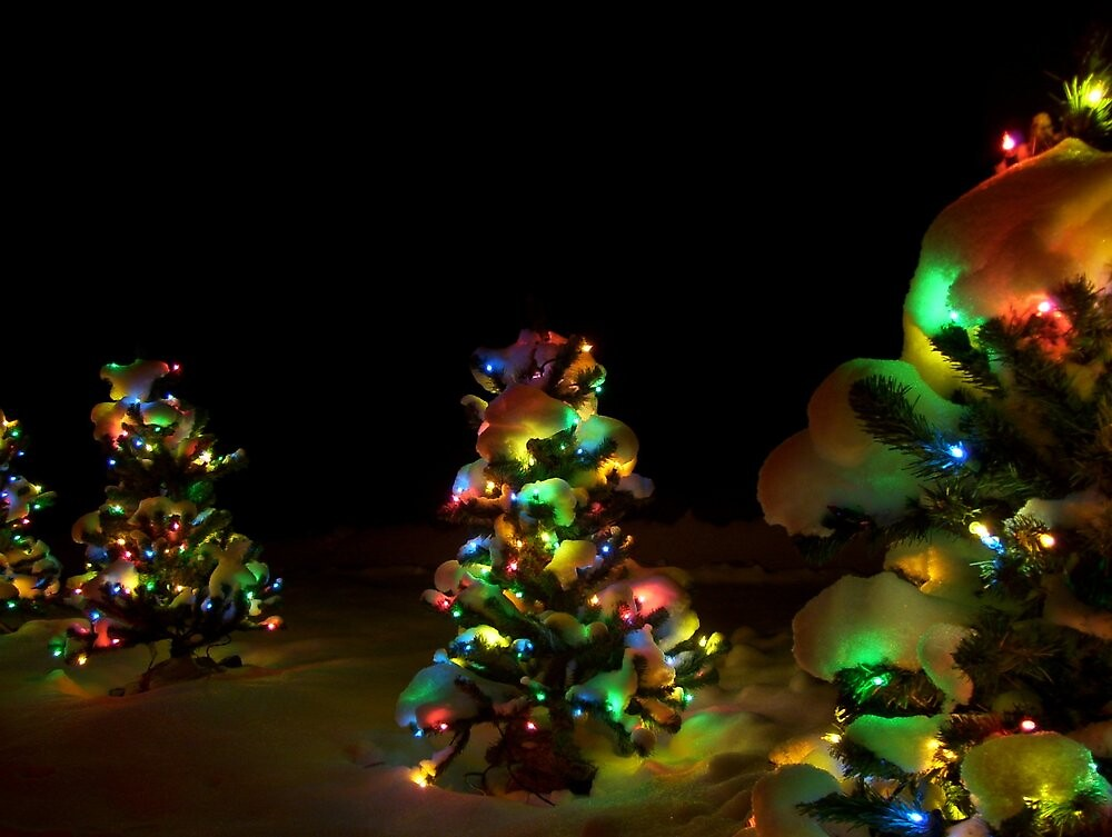 Christmas Lights In Snow by SusanMellen