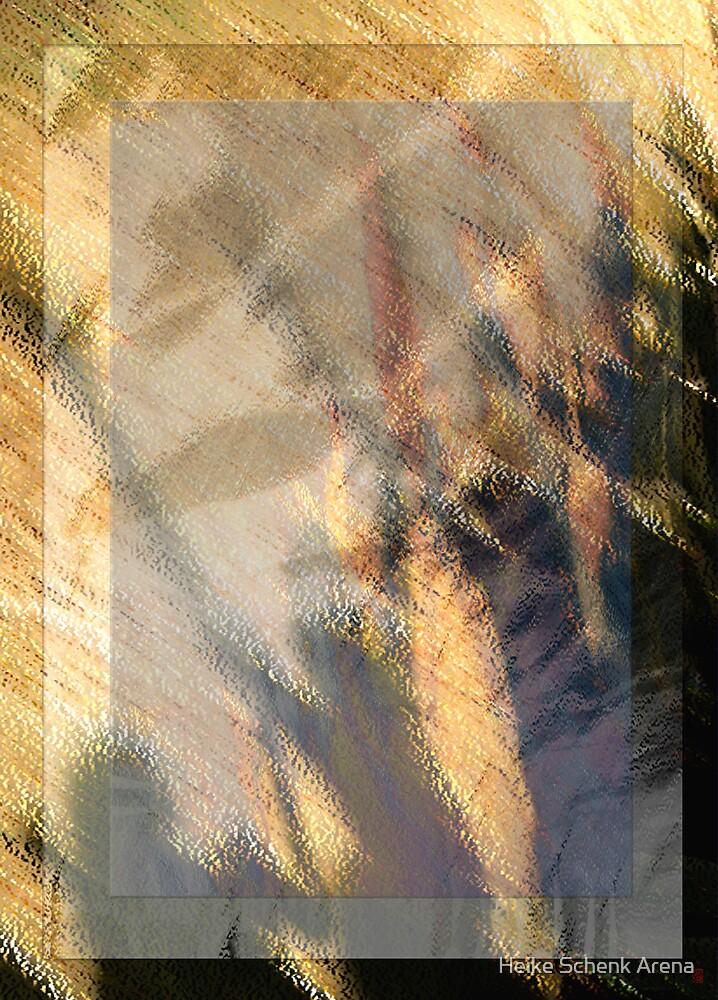 Dancing shadows by Heike Schenk Arena