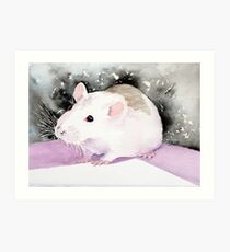 Star, the fancy rat. Art Print