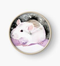Star, the fancy rat. Clock